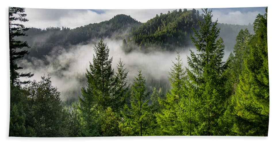 Forest Hand Towel featuring the photograph Mists Among The Hills by Greg Nyquist