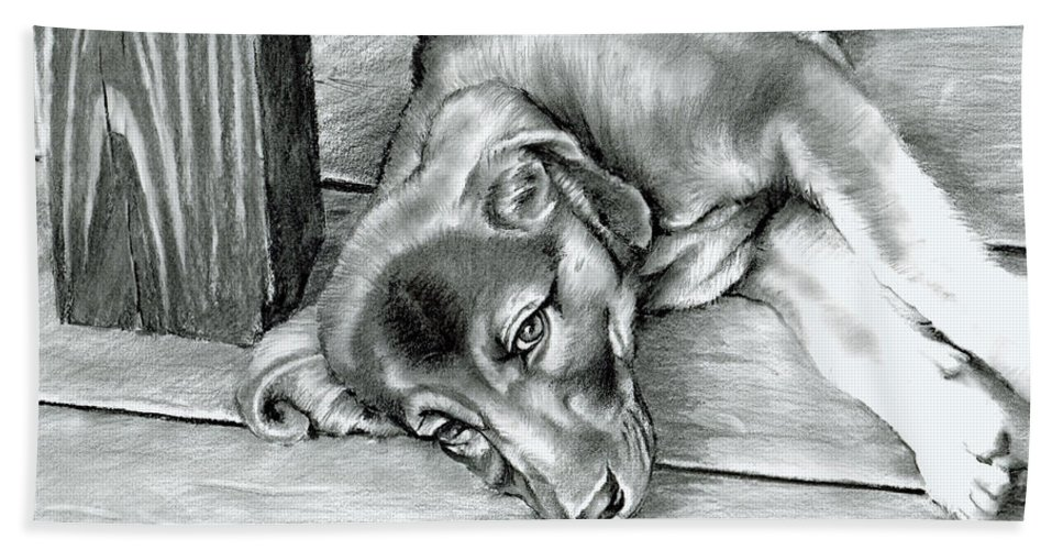 Dog Bath Sheet featuring the drawing Molly by Tom Hedderich