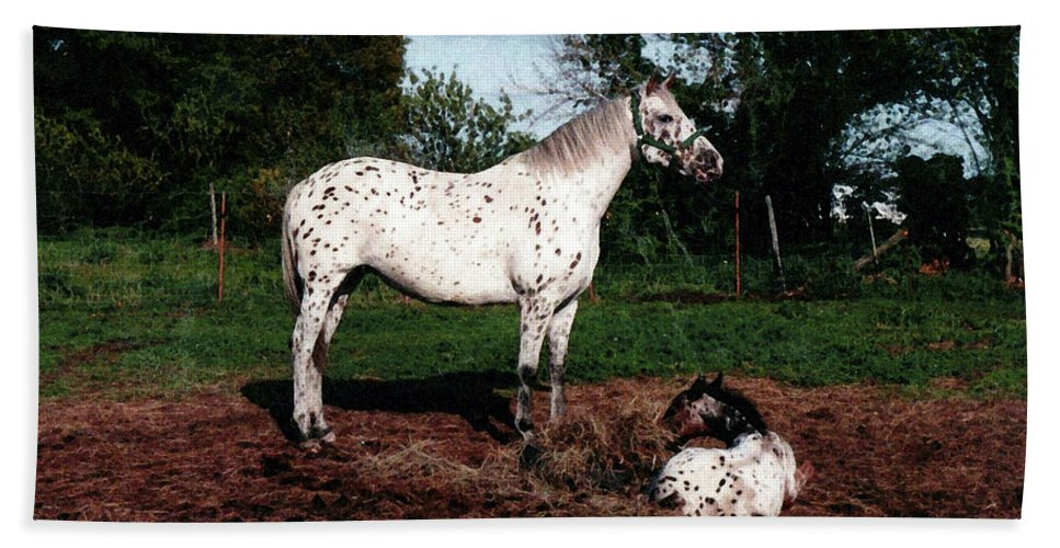 Appaloosa Hand Towel featuring the painting Mom Watches Over by Shere Crossman