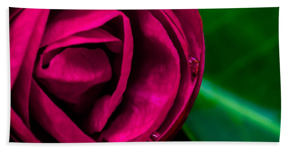 Flower Hand Towel featuring the photograph Moment by Edgar Laureano