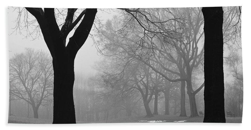 Monarch Park Hand Towel featuring the photograph Monarch Park - 321 by Rick Shea