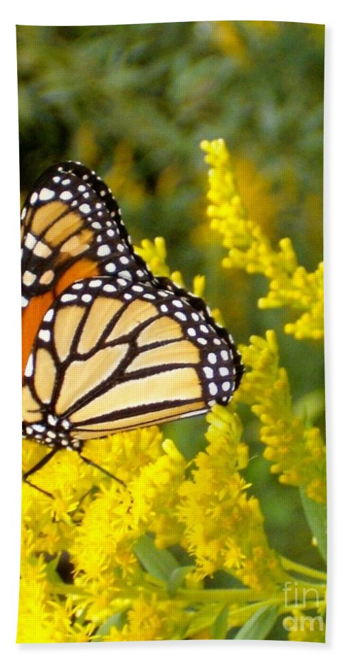 Monarch Hand Towel featuring the photograph Monarch by Sara Raber