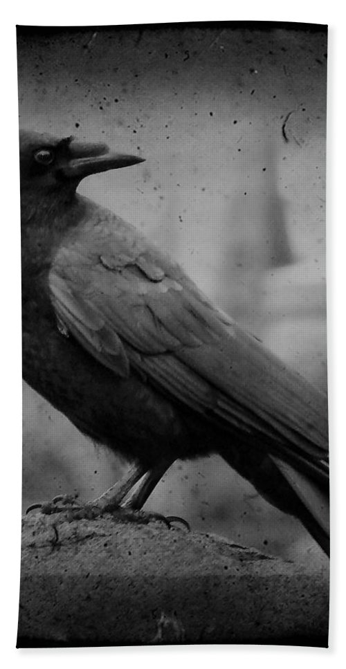 Monochrome Hand Towel featuring the photograph Monochrome Crow by Gothicrow Images