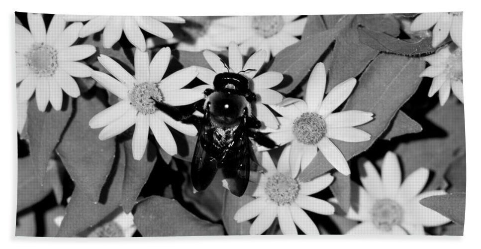 Monochrome Bath Sheet featuring the photograph Monochrome Flowers 2 by David Weeks