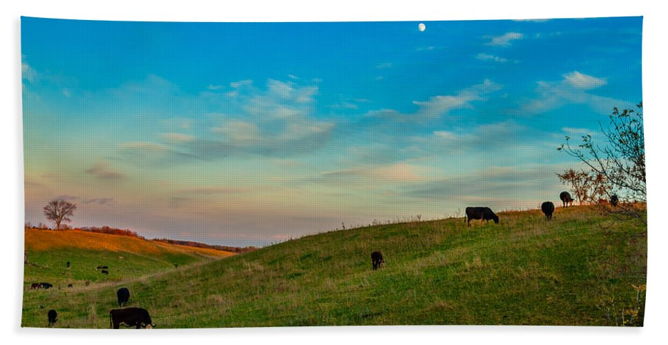 Pasture Hand Towel featuring the photograph Moo Moon by Steve Harrington