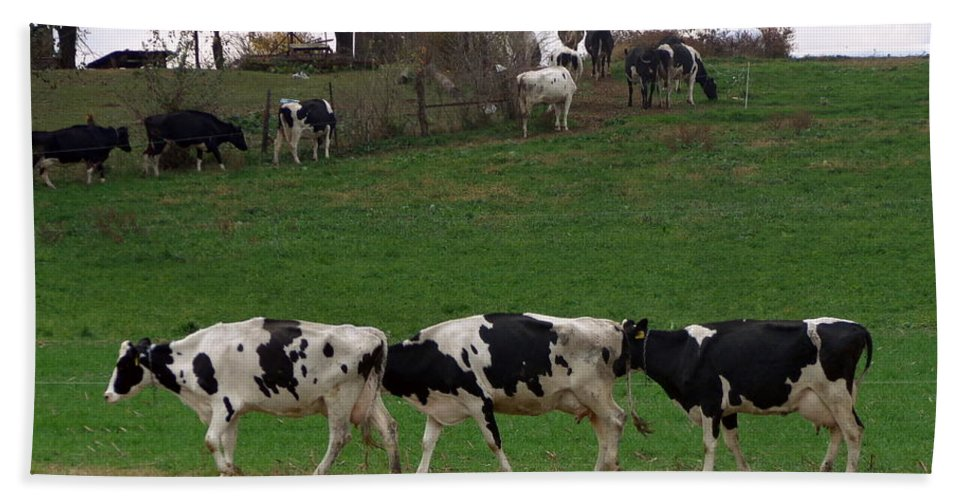 Joseph Skompski Hand Towel featuring the photograph Moo Train by Joseph Skompski