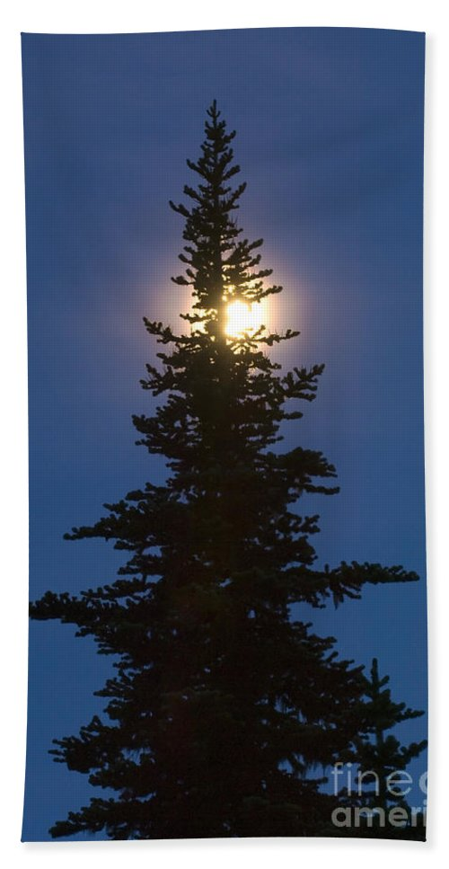 Moon Bath Sheet featuring the photograph Moon Behind Spruce by John Shaw