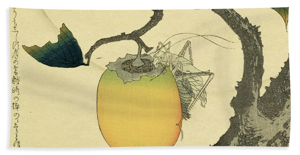 Japanese Hand Towel featuring the drawing Moon Persimmon And Grasshopper by Katsushika Hokusai