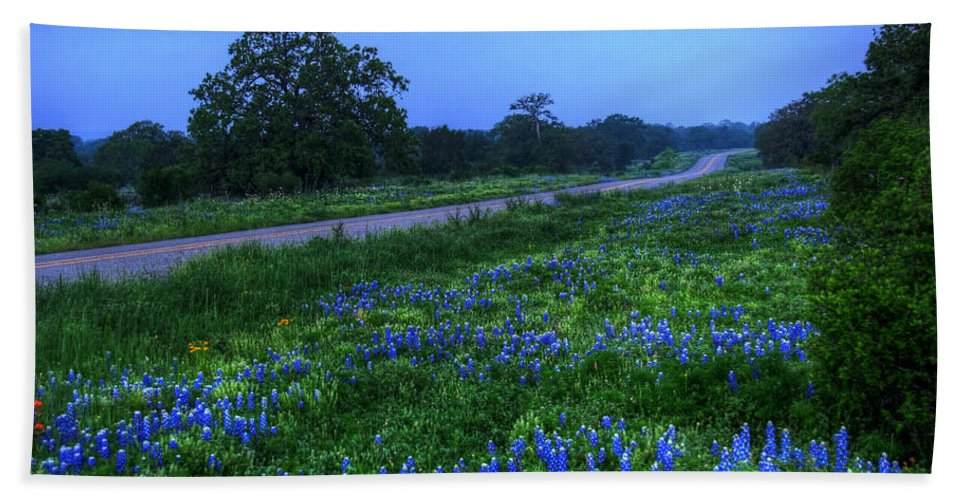 2012 Hand Towel featuring the photograph Moonlit Bluebonnets by Tom Weisbrook