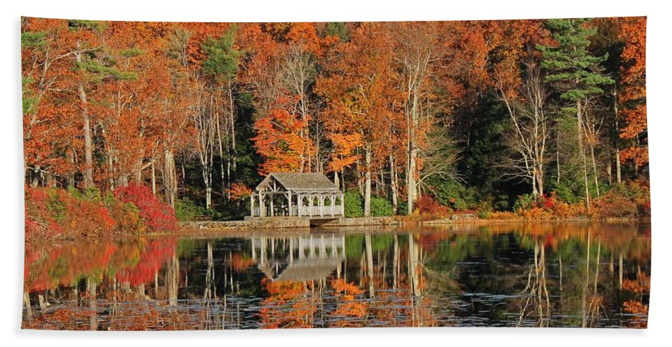 Moore State Park Hand Towel featuring the photograph Moore State Park Autumn I by Michael Saunders