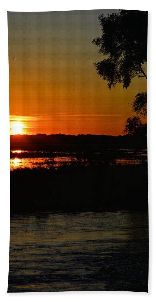 Marsh Bath Sheet featuring the photograph Morning At The Marsh 2 by Bonfire Photography