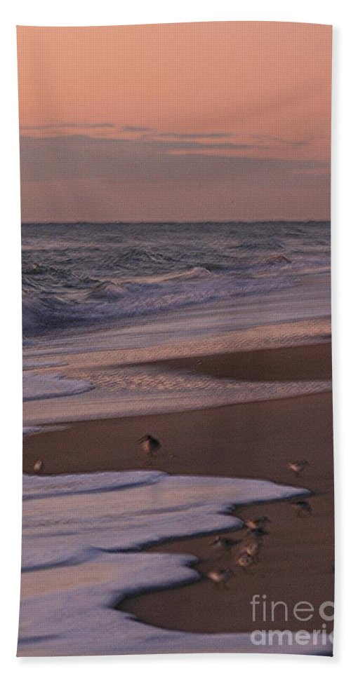 Beach Hand Towel featuring the photograph Morning Birds at the Beach by Nadine Rippelmeyer