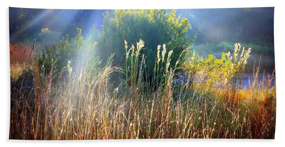 Sunrise Hand Towel featuring the photograph Morning Glory by Carol Groenen