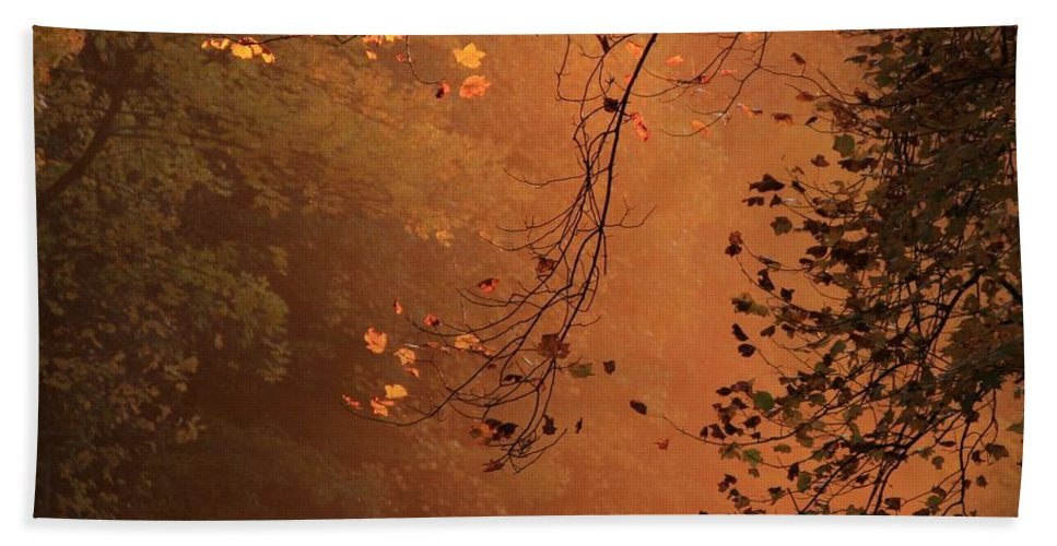 Fog Bath Sheet featuring the photograph Morning Mist-blue Ridge Parkway by Mountains to the Sea Photo