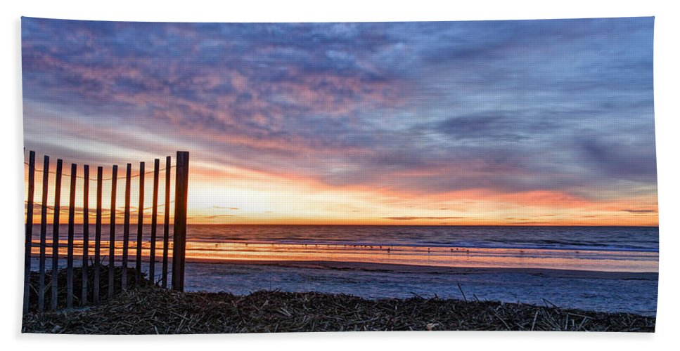 Beach Hand Towel featuring the photograph Morning With The Birds by Phill Doherty