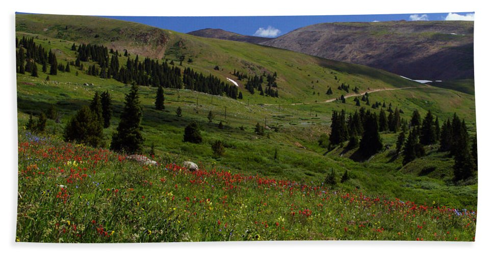 Colorado Bath Sheet featuring the photograph Mosquito Blooms by Jeremy Rhoades