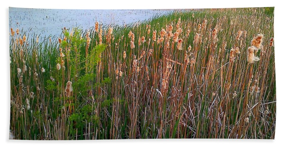 Nature Bath Sheet featuring the photograph Moss Landing Washington North Carolina by Joan Meyland