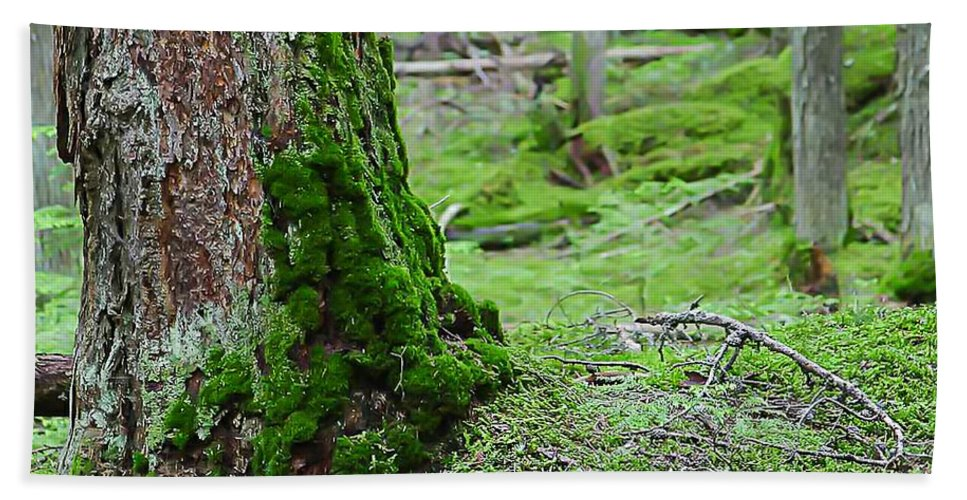 Nature Hand Towel featuring the photograph Mossy Endevor by Nikki Vig