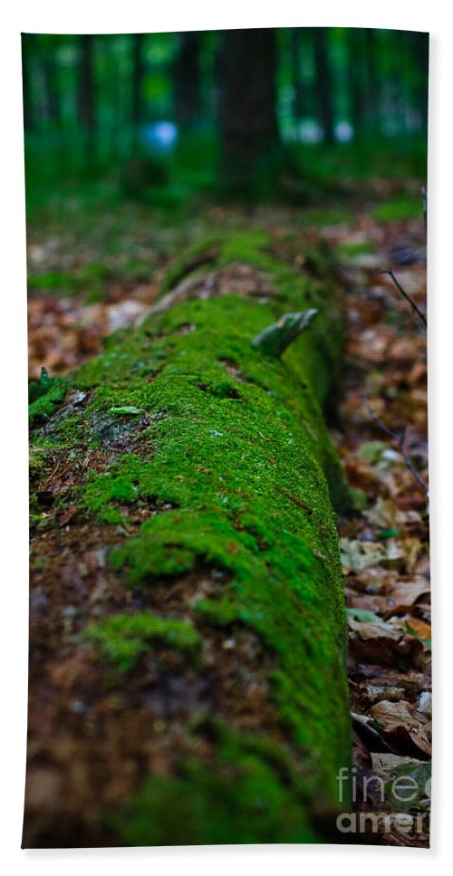 Andrew Slater Photography Hand Towel featuring the photograph Mossy Log by Andrew Slater