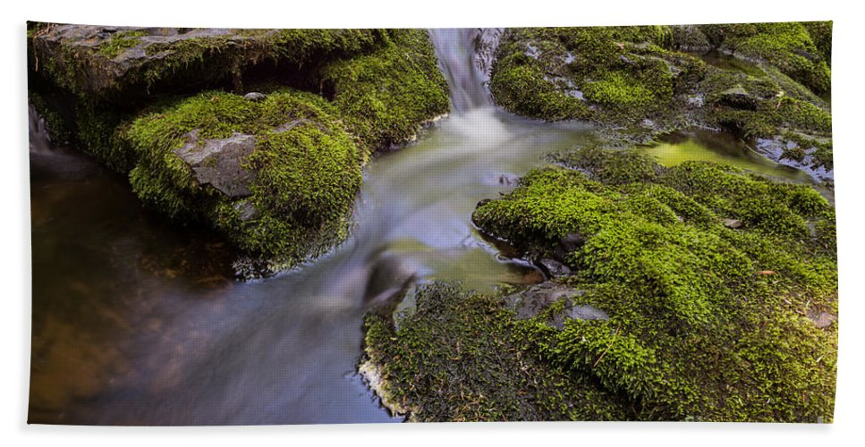 Mossy Stream Hand Towel featuring the photograph Mossy Stream by Michael Ver Sprill