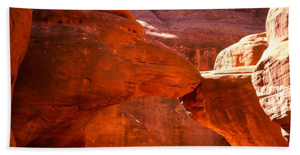 Arch Bath Sheet featuring the photograph Mother And Child Turtles by Tracy Knauer