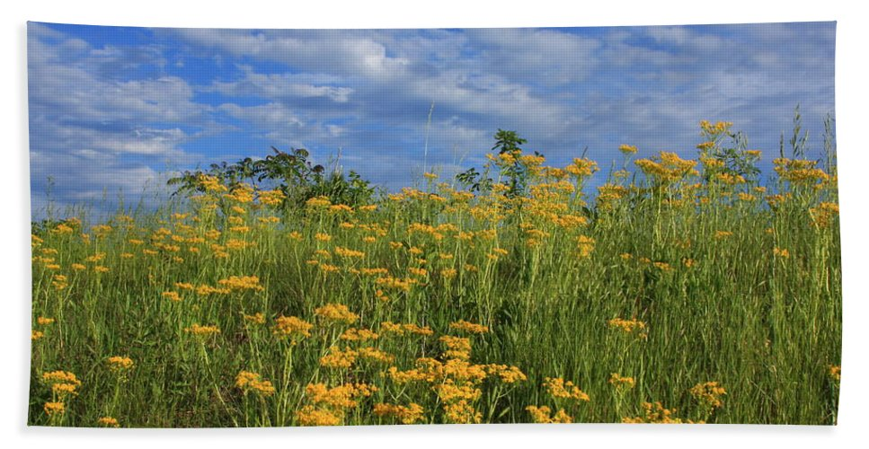 Flowers Bath Sheet featuring the photograph Mount Cheaha Goldenrod-alabama by Mountains to the Sea Photo