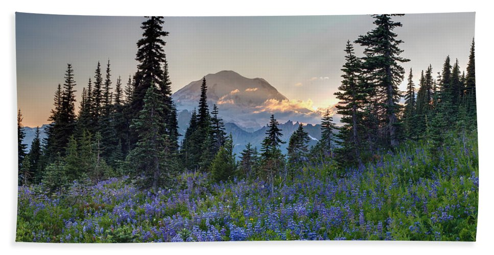 Rainier Hand Towel featuring the photograph Mount Rainer Flower Fields by Mike Reid