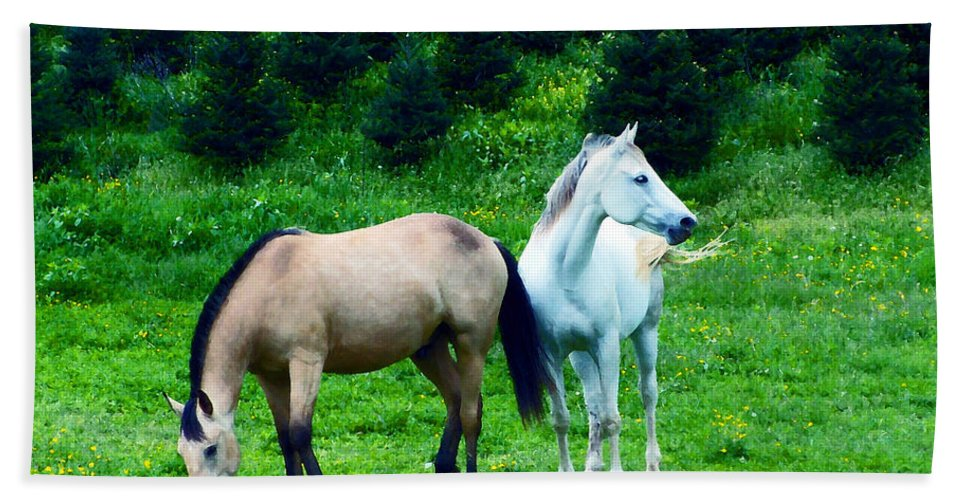 Horses Hand Towel featuring the photograph Mountain Horses Grazing by Lydia Holly