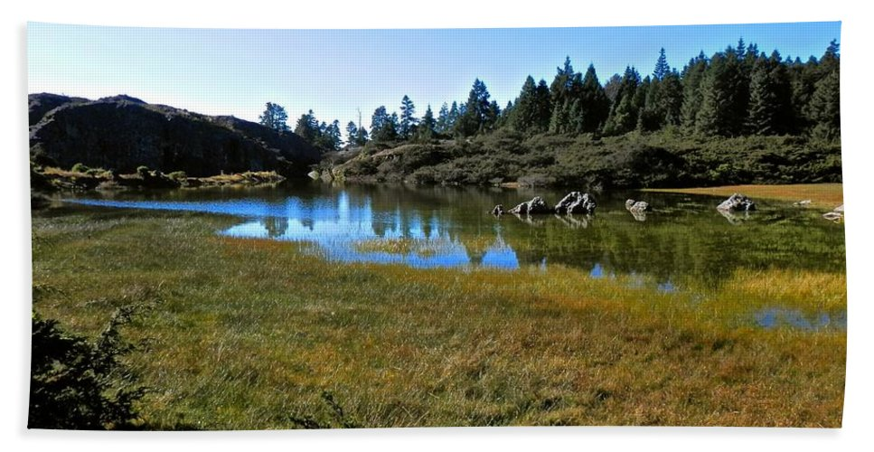 Beautiful Hand Towel featuring the photograph Mountain Marshes 1 by Joe Wyman