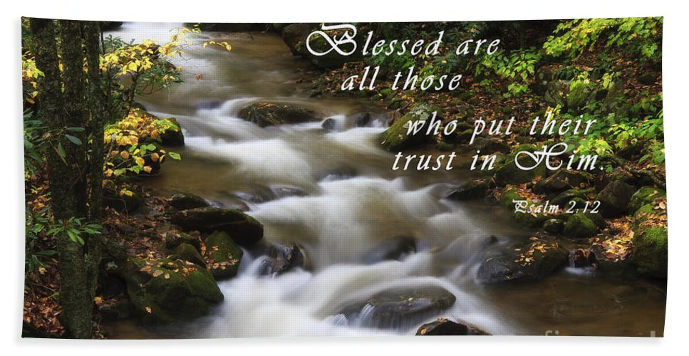 Creek Hand Towel featuring the photograph Mountain Stream With Scripture by Jill Lang