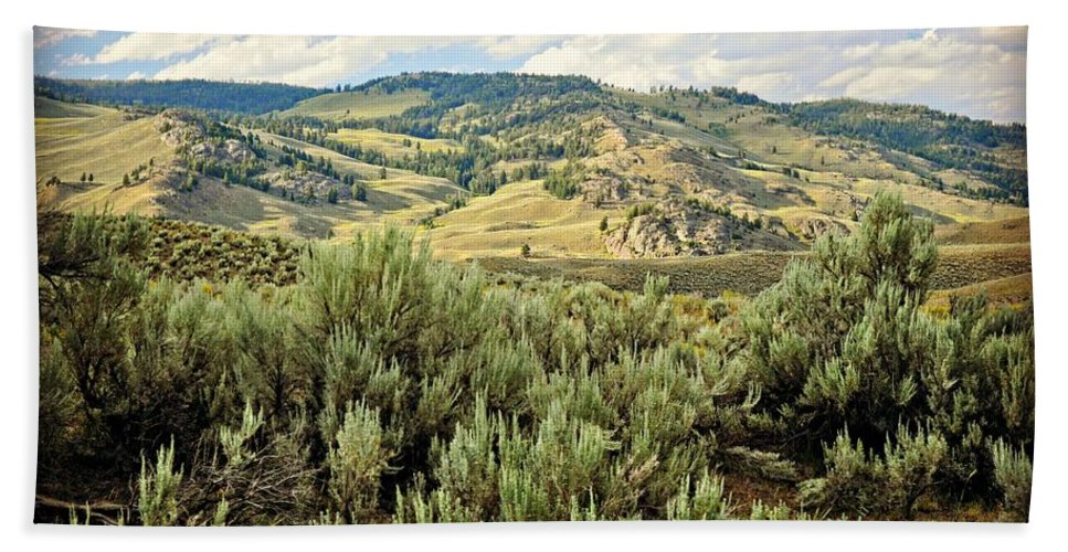 Landscape Bath Sheet featuring the photograph Mountains North Of The Lamar by Marty Koch
