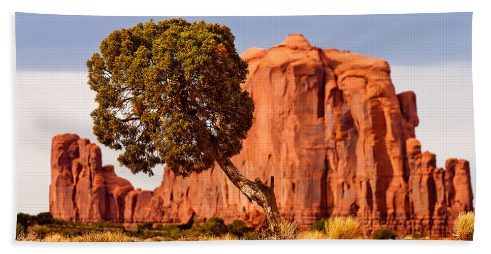 Monument Valley Hand Towel featuring the photograph Move Out Of The Way Tree by Peter Tellone