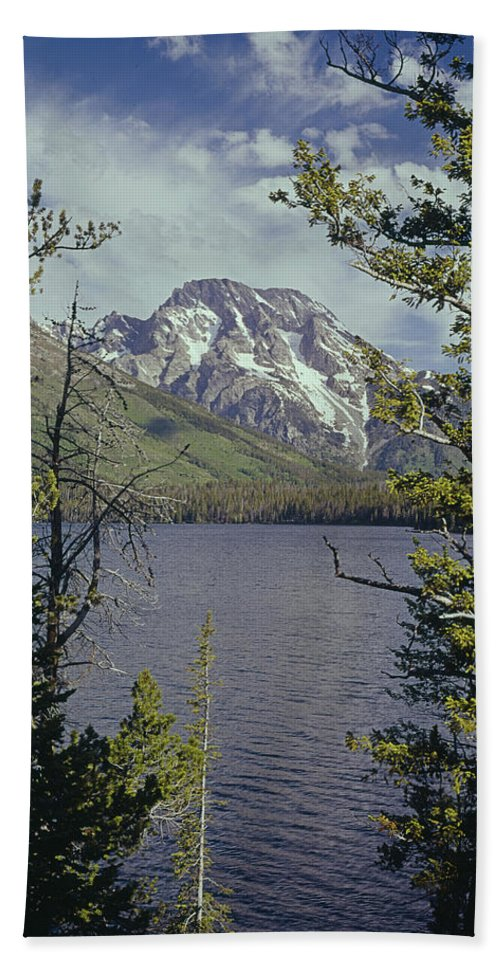 Mt. Moran Bath Sheet featuring the photograph 1m9226-mt. Moran And Jenny Lake, Wy by Ed Cooper Photography