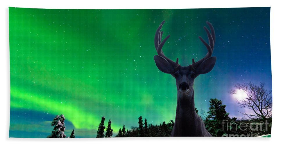 Animal Hand Towel featuring the photograph Mule Deer And Aurora Borealis Over Taiga Forest by Stephan Pietzko