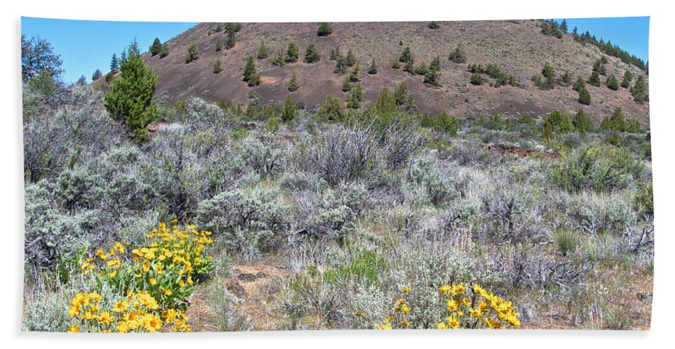 Mule's Ears Hand Towel featuring the photograph Mule's Ears And Schonchin Butte In Lava Beds Nmon-ca by Ruth Hager