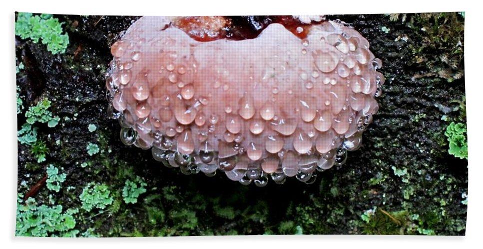 Mushroom Bath Sheet featuring the photograph Mushroom 1 by Lena Photo Art
