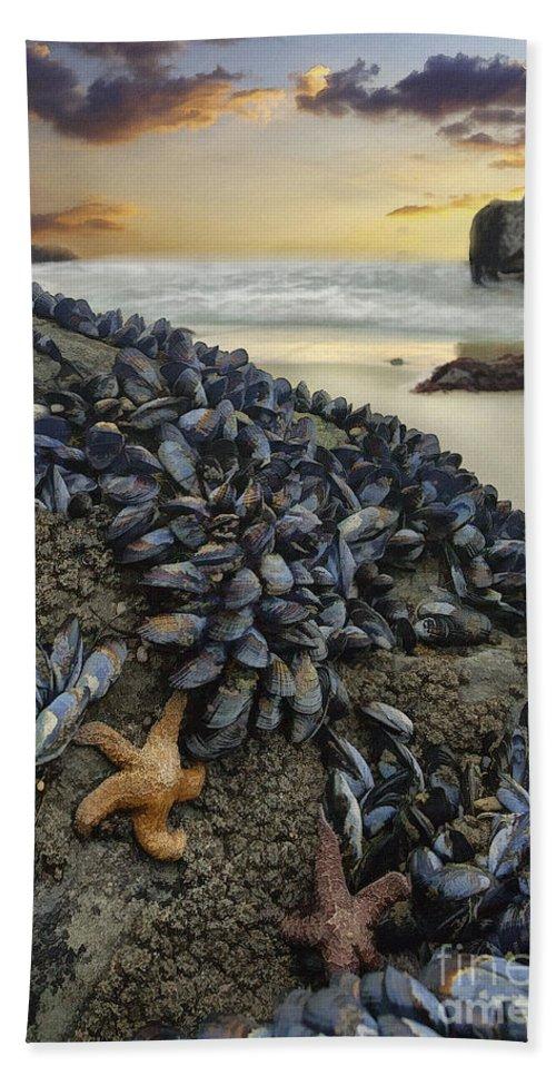Coast Bath Sheet featuring the digital art Mussel Beach by Sharon Foster