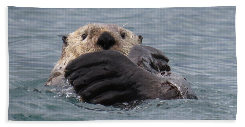 Otter Hand Towel featuring the photograph My Otter by Stacey May