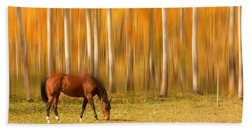 Horse Bath Towel featuring the photograph Mystic Autumn Grazing Horse by James BO Insogna