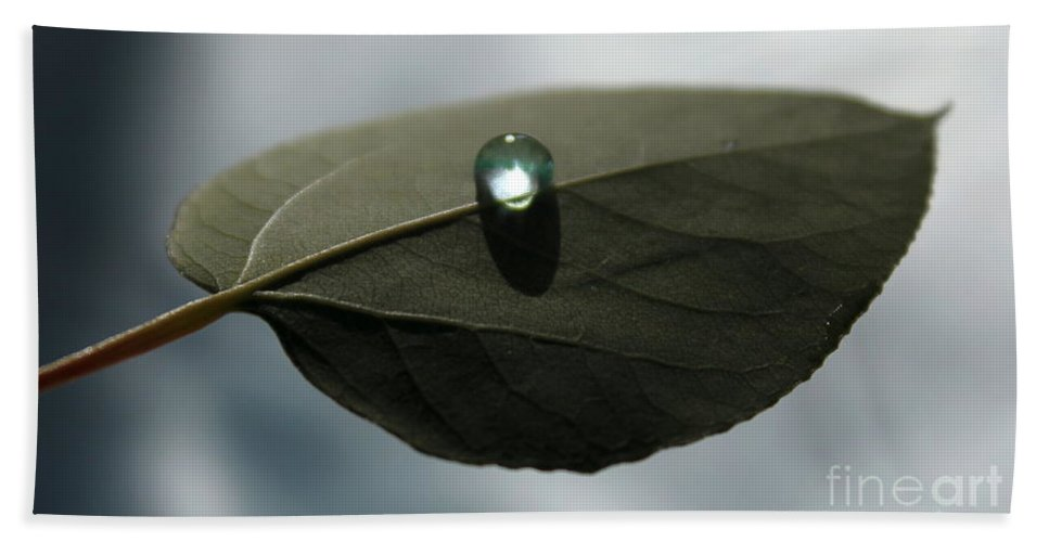 Leaf Bath Sheet featuring the photograph Mystical Moments by Krissy Katsimbras