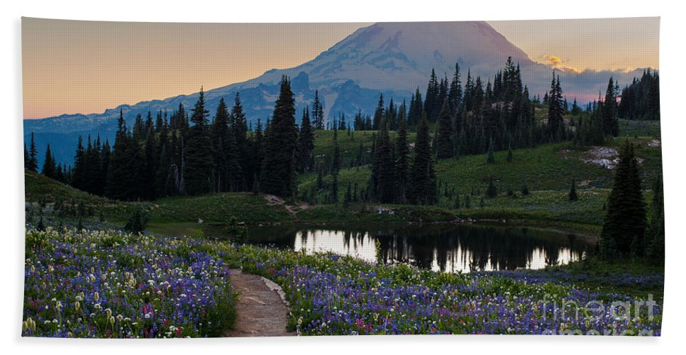 Rainier Hand Towel featuring the photograph Naches Loop Meadows by Mike Reid