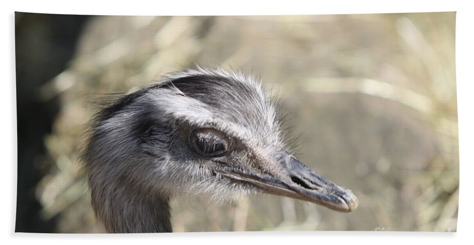 Nandu Hand Towel featuring the photograph Nandu Or Rhea Portrait by Christiane Schulze Art And Photography
