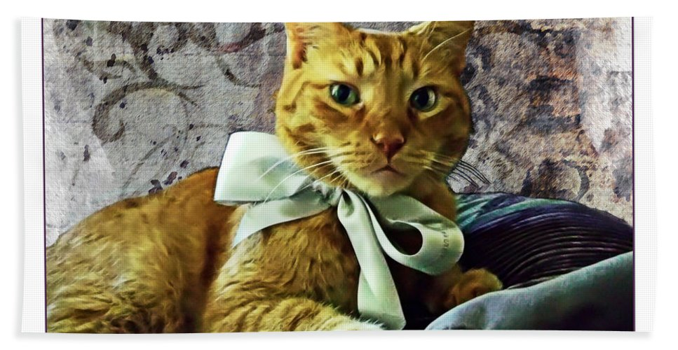 Feline Hand Towel featuring the photograph Napoleon And The Ribbon by Joan Minchak