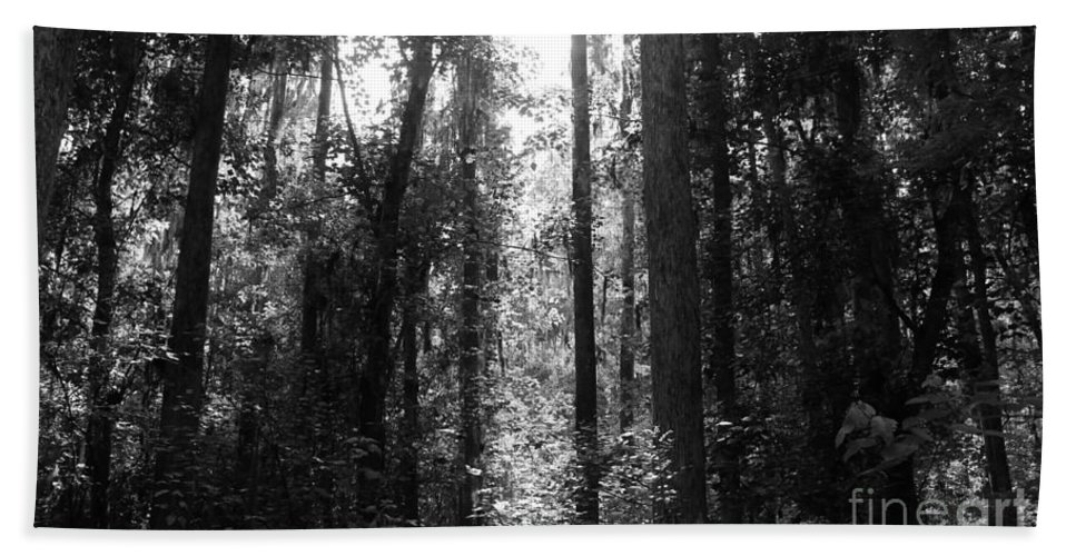 Kerisart Hand Towel featuring the photograph Narrow Path by Keri West