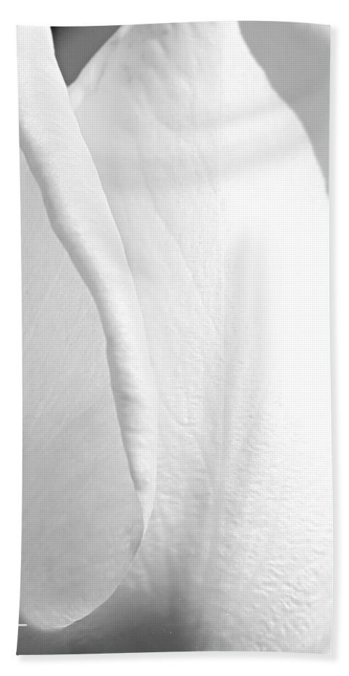 Beauty Shines Hand Towel featuring the photograph Natural Beauty by Kume Bryant