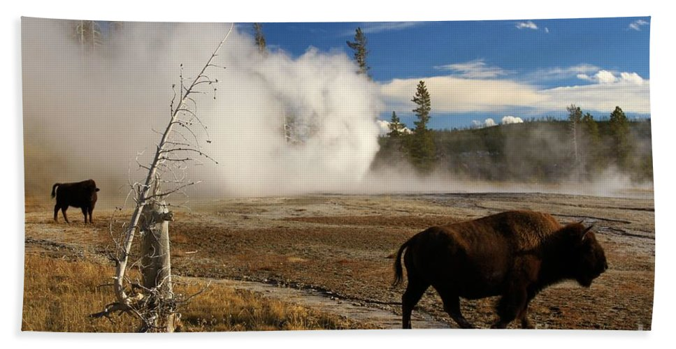 Vent Geyser Hand Towel featuring the photograph Natural Warmth by Adam Jewell