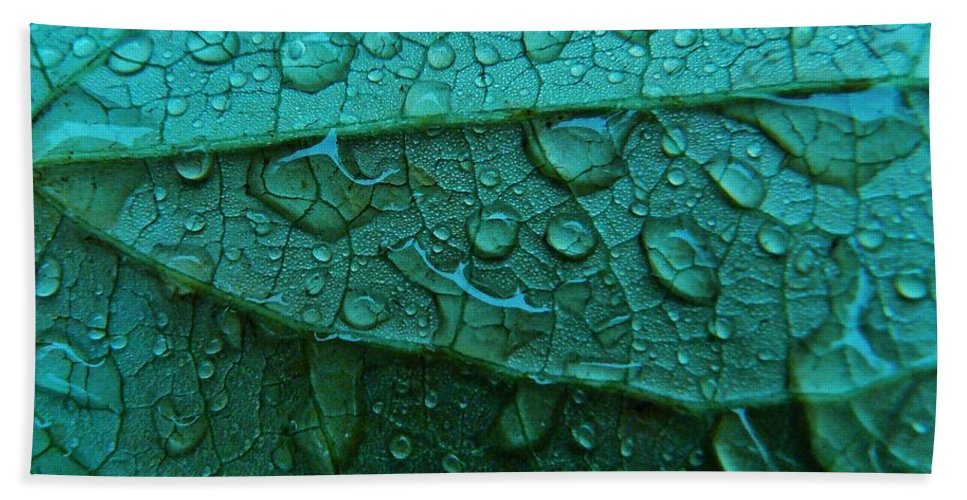 Abstract Bath Sheet featuring the photograph Natures Abstract by Barbara St Jean