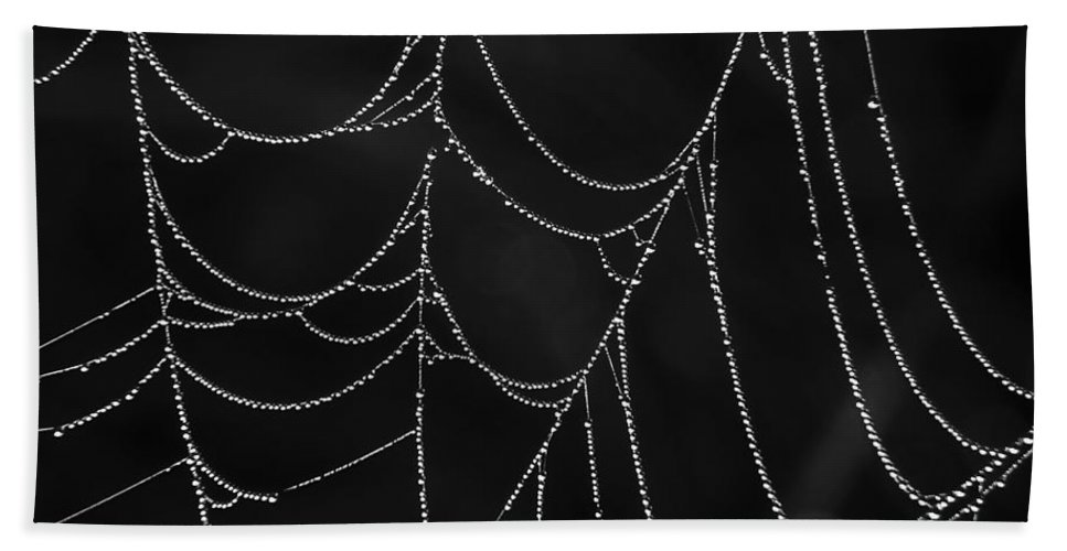 Spider Bath Sheet featuring the photograph Nature's Gift by Whispering Peaks Photography