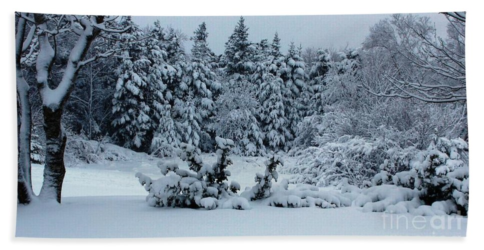 Natures Handiwork Bath Sheet featuring the photograph Natures Handywork - Snowstorm - Snow - Trees by Barbara Griffin