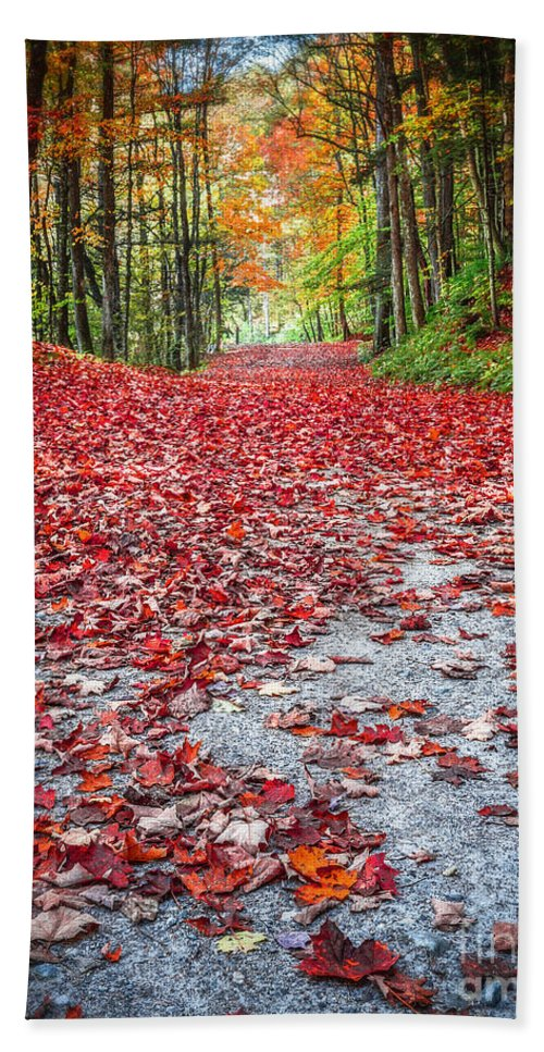 Fall Bath Towel featuring the photograph Nature's Red Carpet by Edward Fielding